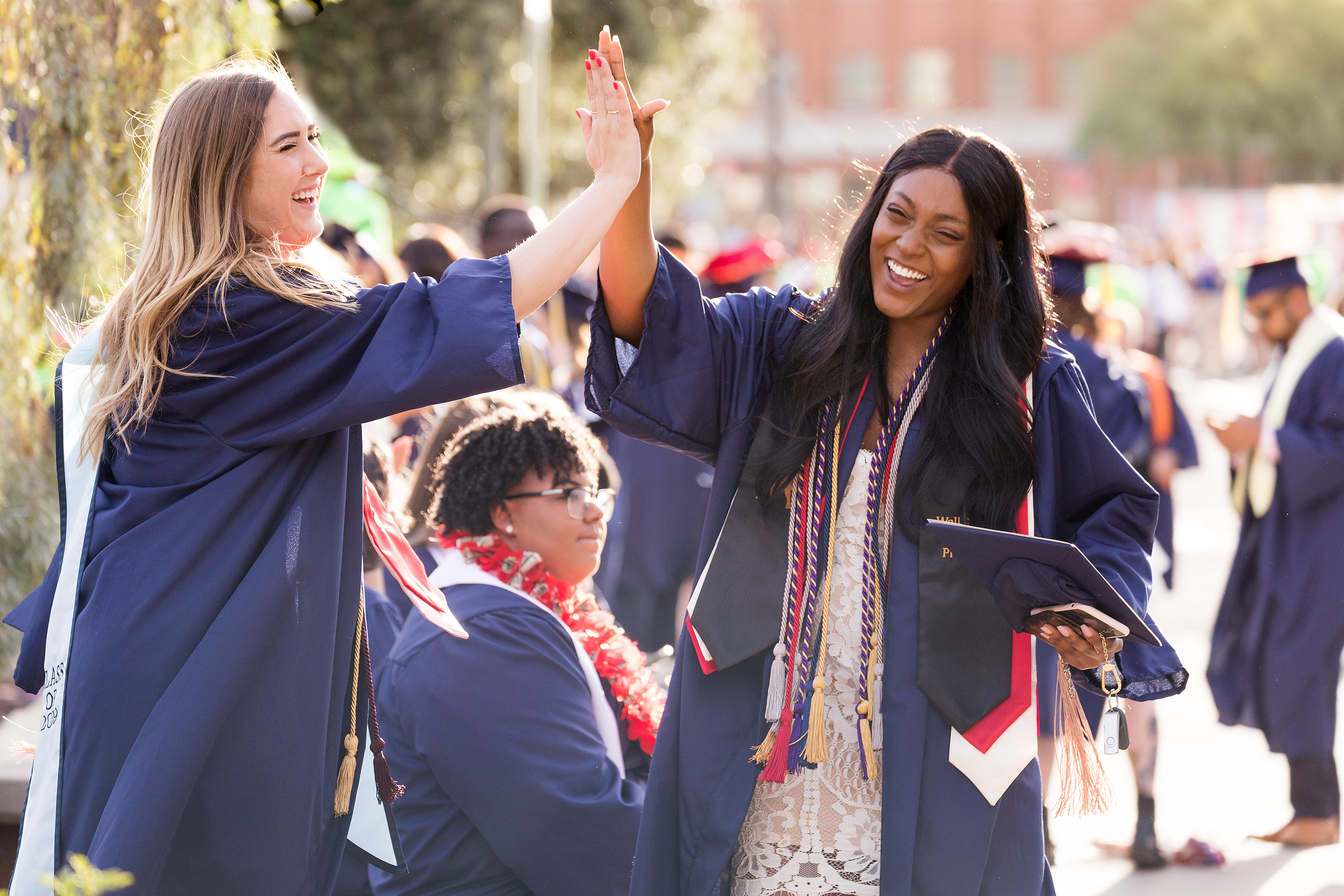 Arizona graduates