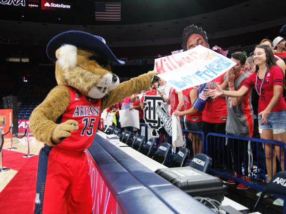 Wilbur Wildcat on the set of College GameDay in the McKale Center.
